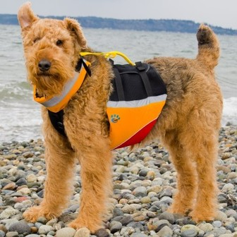 Under Dog PFD for Mans Best Friend